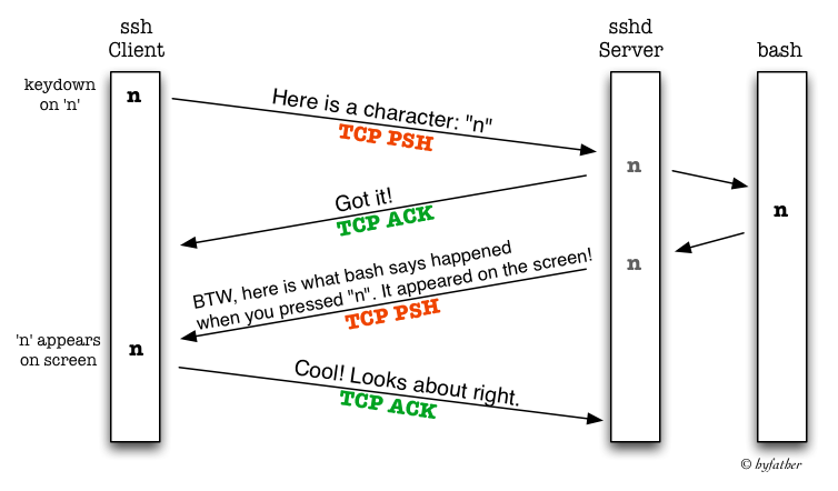 SSH uses four TCP segments for each character you type
